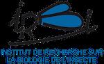 logo IRBI